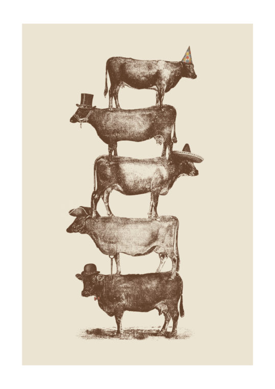 Poster Cow Cow Nuts 1