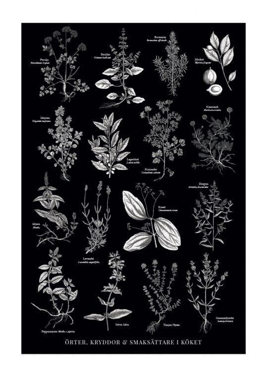 Poster Köksörter i svartvitt 1