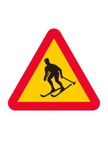 Poster Skidåkare - varning 1