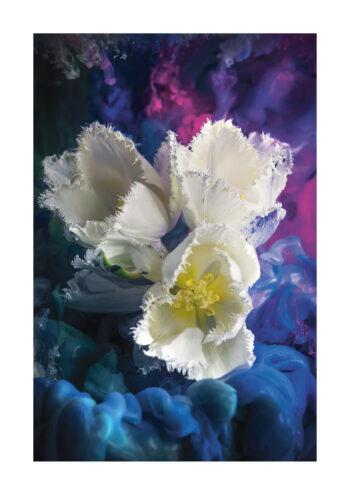 - Magic Artist Design PosterTre Vita Blommor 1