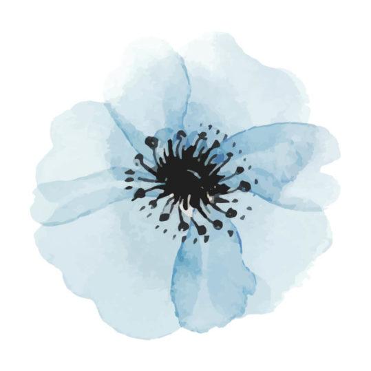 Poster Blå blomma vattenfärg 3