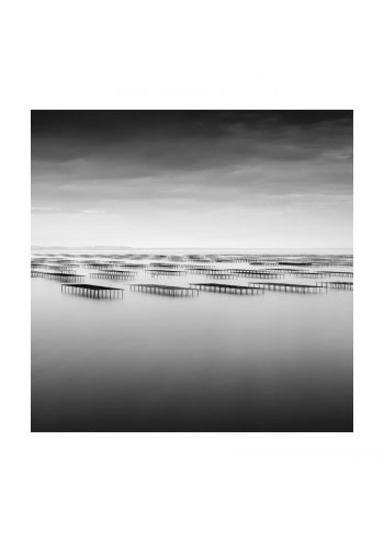 - Robert Bolton PosterBolton Oyster Beds 1