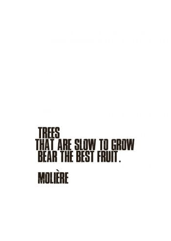 Poster Trees that are slow to grow... 1